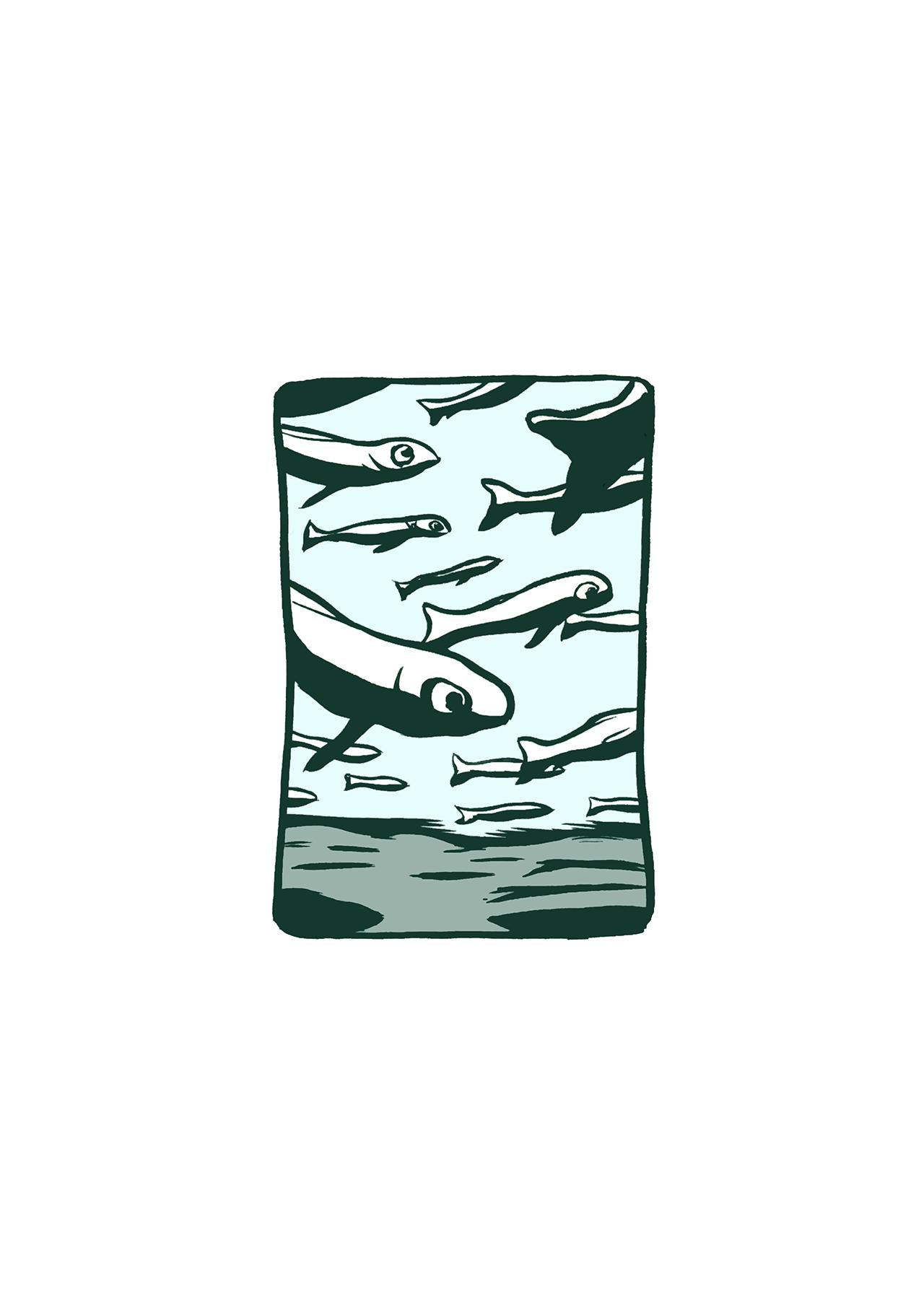 sd_015